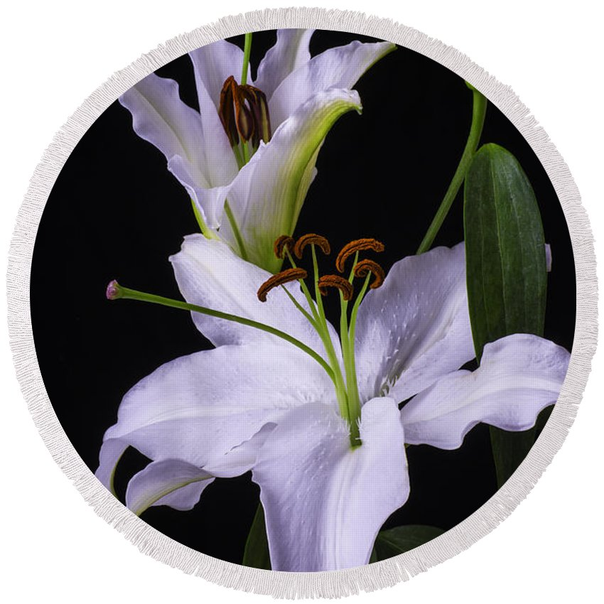 White Tiger Lily Round Beach Towel featuring the photograph Lily's In Bloom by Garry Gay