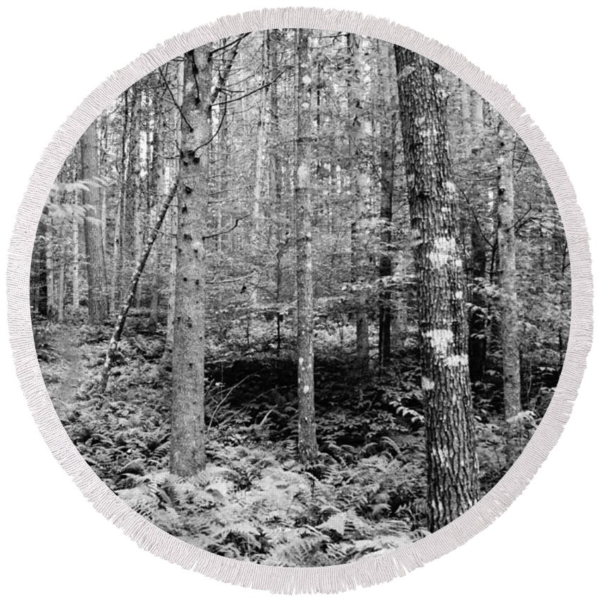 Black/white Round Beach Towel featuring the photograph Little Trail by Jeffery L Bowers