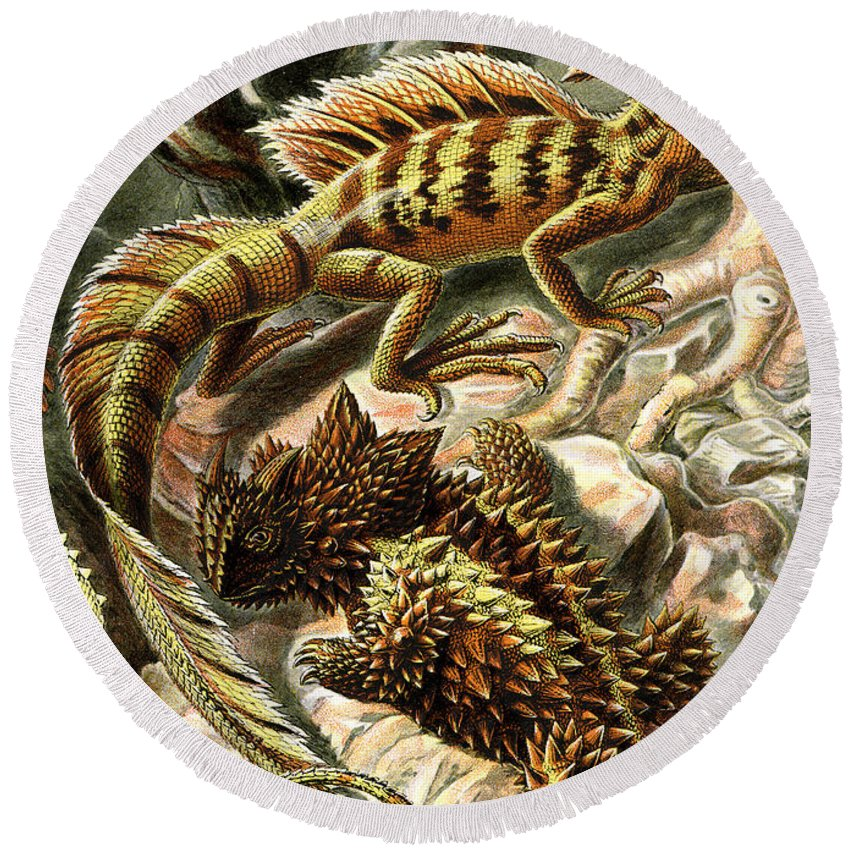 Lacertilia Round Beach Towel featuring the digital art Lizard Detail II by Unknown