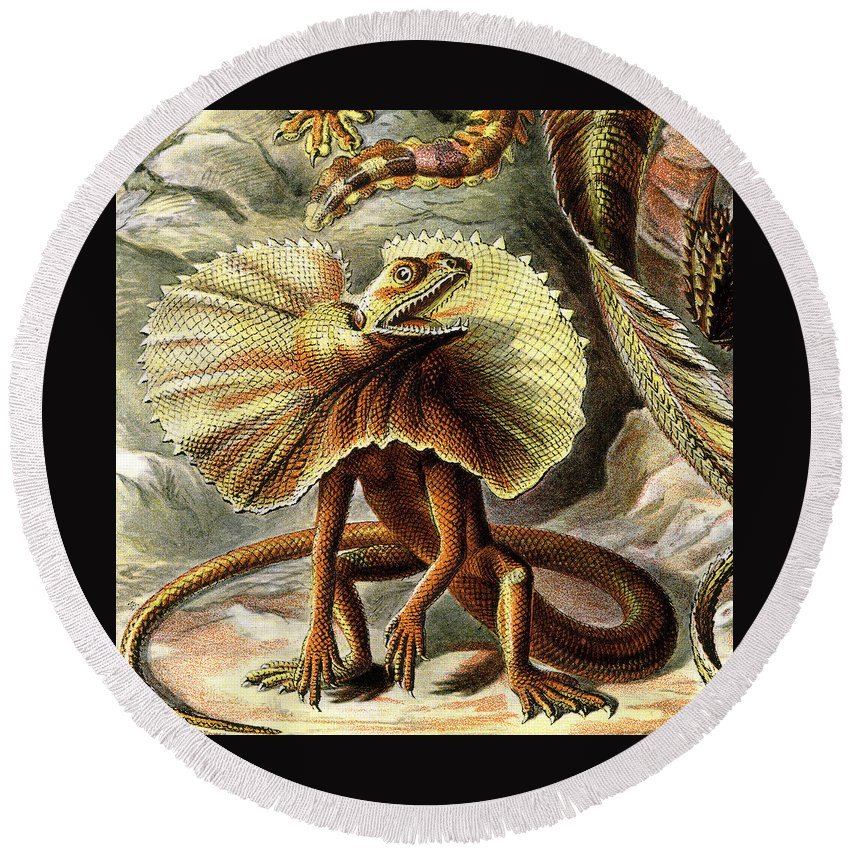 Lacertilia Round Beach Towel featuring the digital art Lizard Detail IIi by Unknown