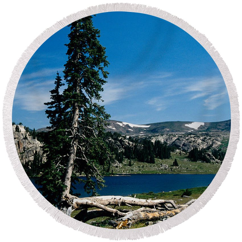 Mountains Round Beach Towel featuring the photograph Lone Tree at Pass by Kathy McClure