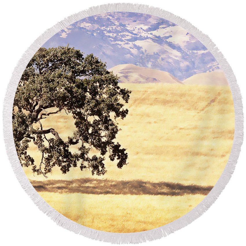 Lone Tree Round Beach Towel featuring the photograph Lone Tree by Caitlyn Grasso