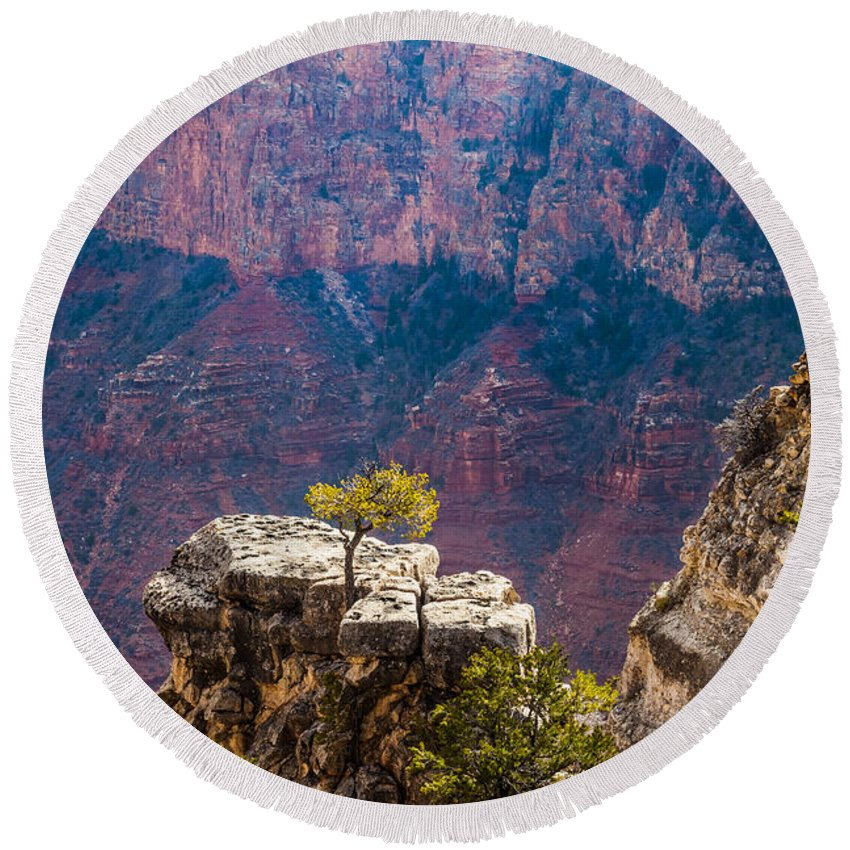 Arizona Round Beach Towel featuring the photograph Lone Tree On Outcrop Grand Canyon by Ed Gleichman