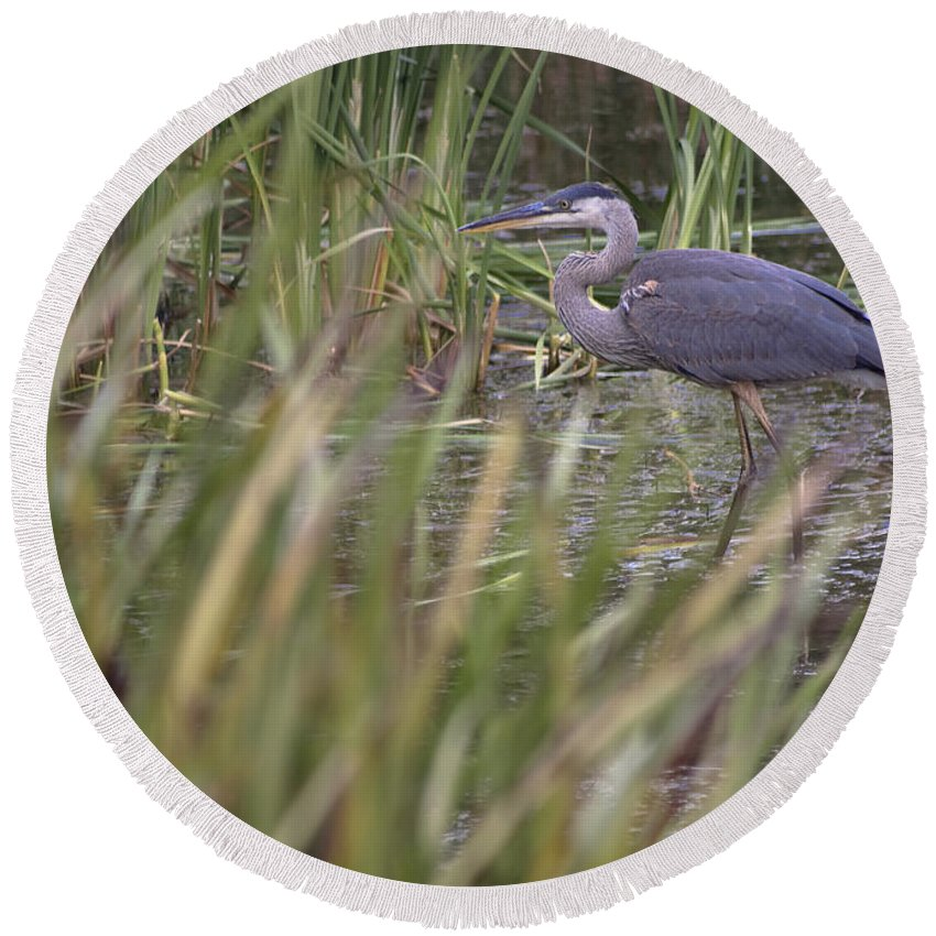Heron Round Beach Towel featuring the photograph Lonely Heron by Hany J