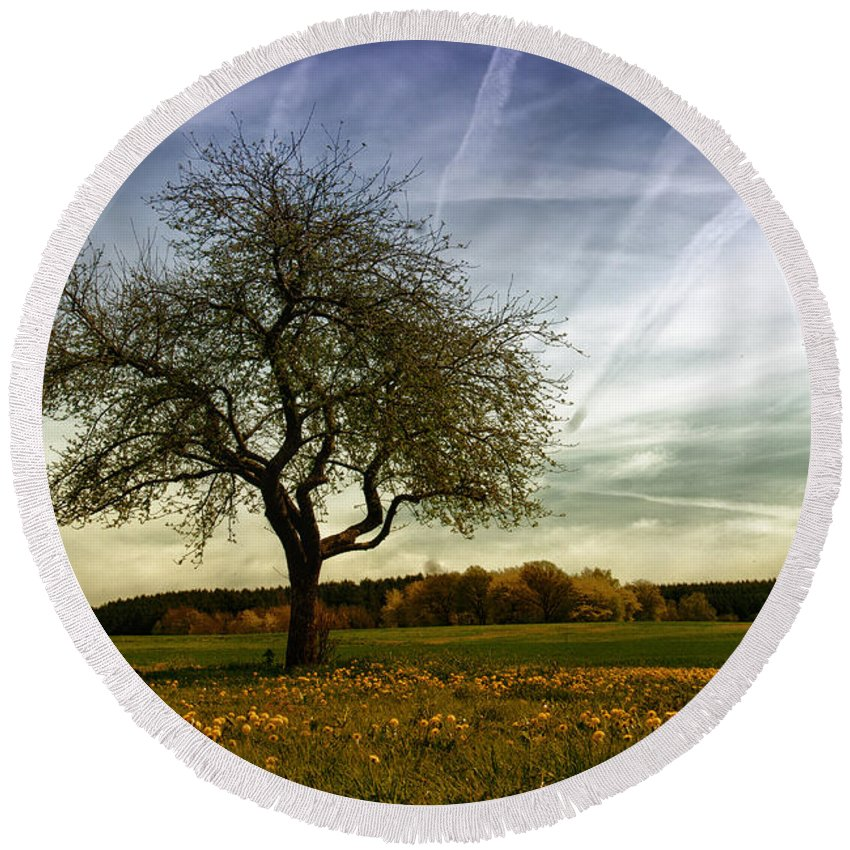 Agriculture Round Beach Towel featuring the photograph Lonely by TouTouke A Y