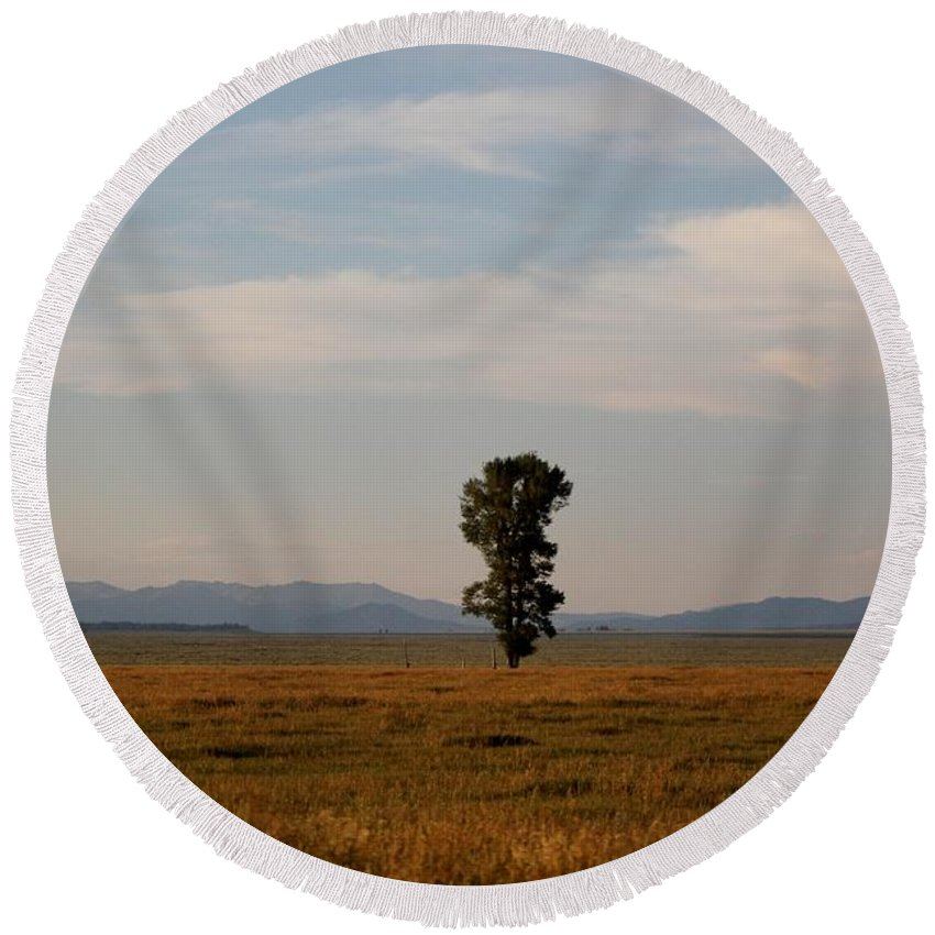 Kelly Round Beach Towel featuring the photograph Lonely Tree by Catie Canetti