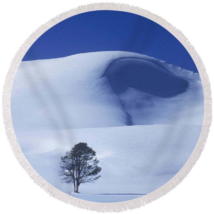 North America Round Beach Towel featuring the photograph Lonely Tree In Winter Yellowstone National Park by Dave Welling