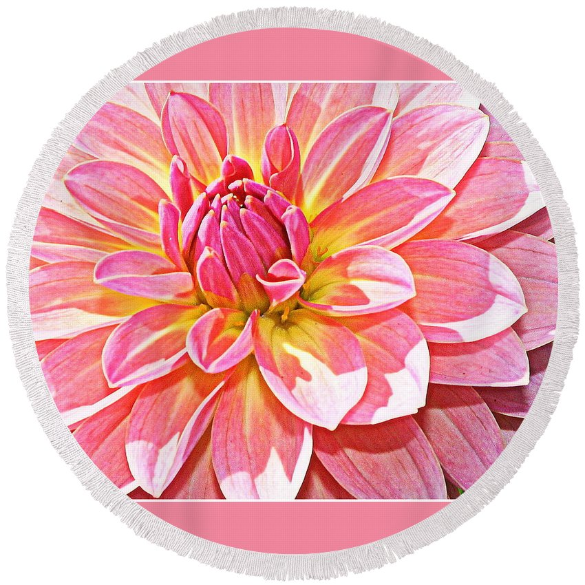 Dahlia Round Beach Towel featuring the photograph Lovely In Pink - Dahlia by Dora Sofia Caputo Photographic Design and Fine Art