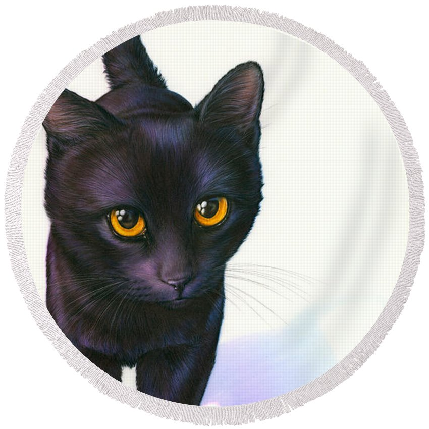 Alertness Round Beach Towel featuring the photograph Lucky Cat by MGL Meiklejohn Graphics Licensing