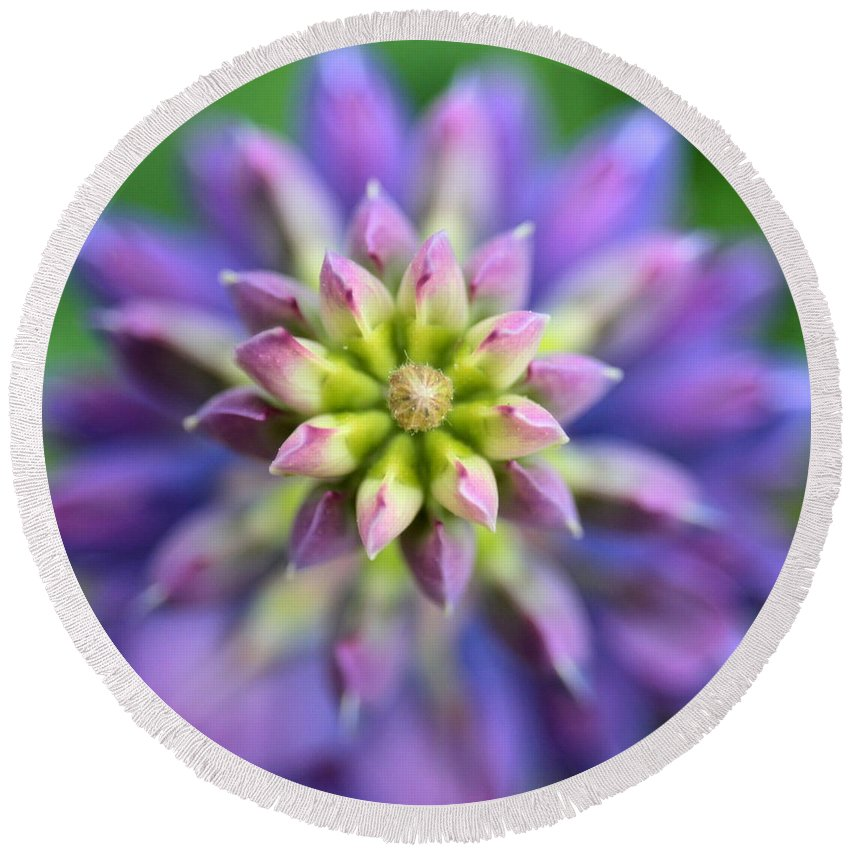 Lupine Round Beach Towel featuring the photograph Lupine - Top Down by Kenny Glotfelty