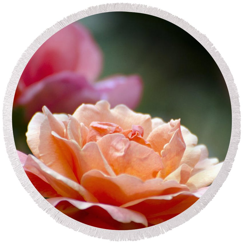Flower Round Beach Towel featuring the photograph Macro Orange And Pink Floribunda Rose by Terri Winkler