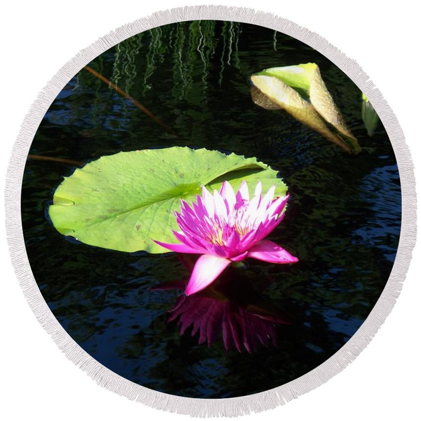 Water Lilies Round Beach Towel featuring the photograph Magenta Lily Monet by Eric Schiabor
