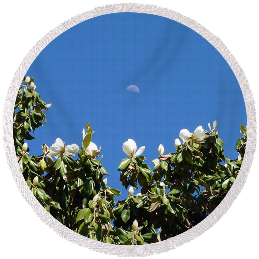 Moon Round Beach Towel featuring the photograph Magnolia Moon by Meghan at FireBonnet Art