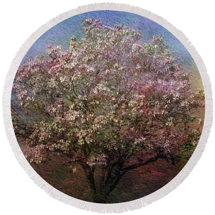 Tree Round Beach Towel featuring the photograph Magnolia Tree In Bloom by Sandy Keeton