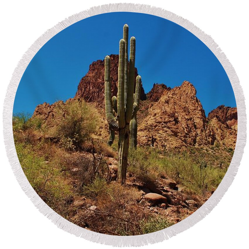America Round Beach Towel featuring the photograph Majestic Saguaro by Dany Lison