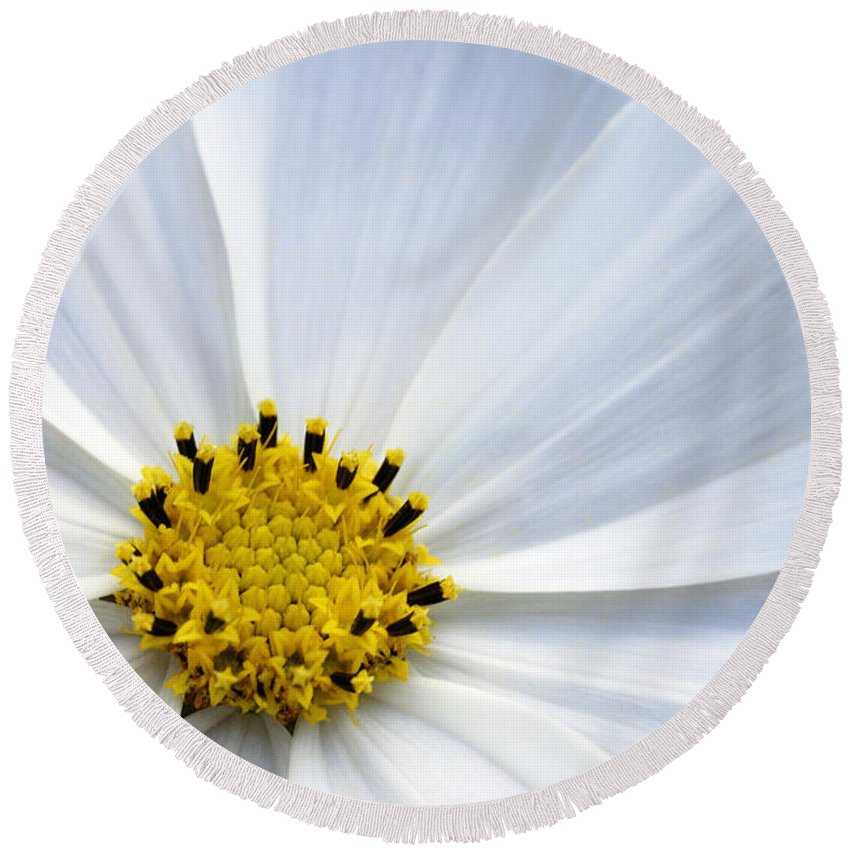 Make A Wish 2 Round Beach Towel featuring the photograph Make A Wish 2 by Wendy Wilton