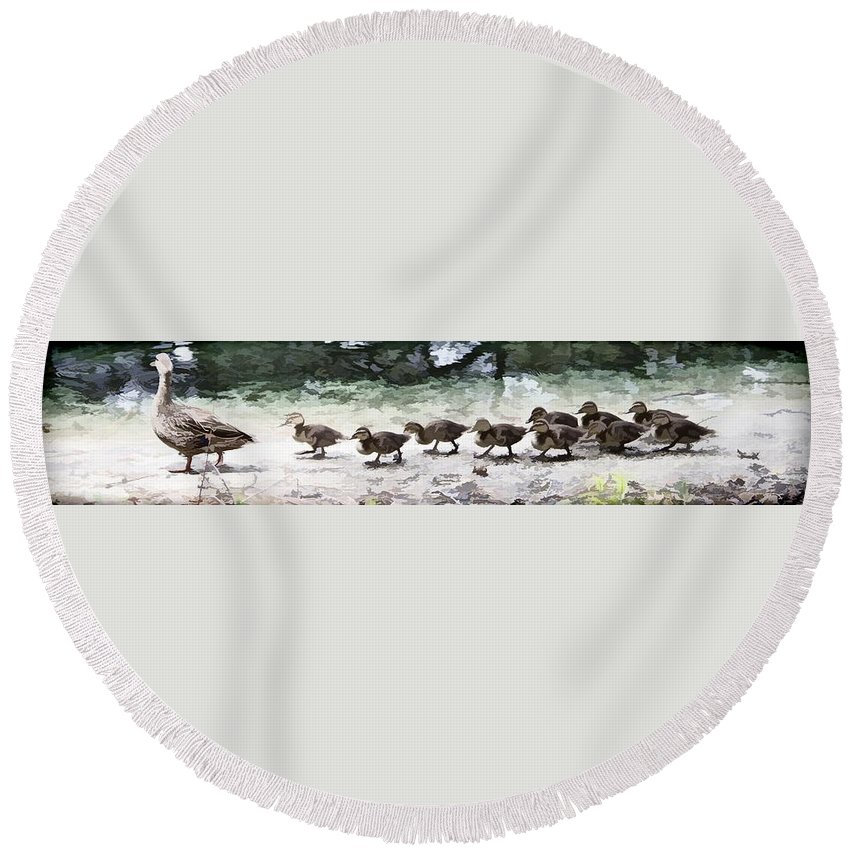 Ducks Babies Together Line Mallard Round Beach Towel featuring the photograph Mama Duckies And Her Babies by Alice Gipson