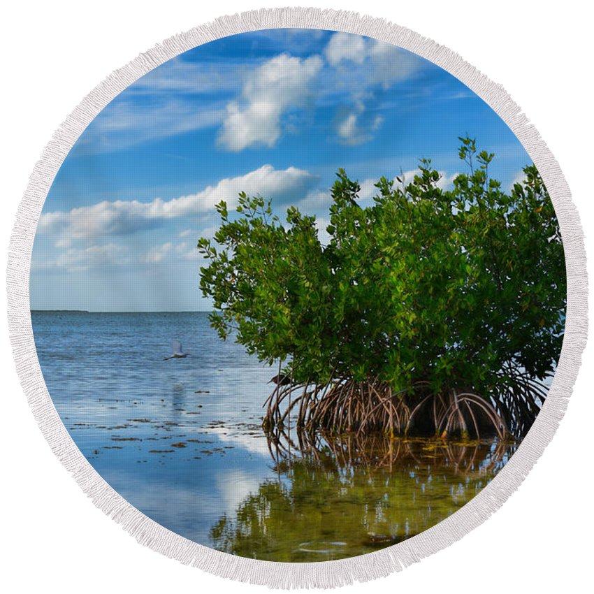 Mangrove Round Beach Towel featuring the photograph Mangrove by Olga Hamilton