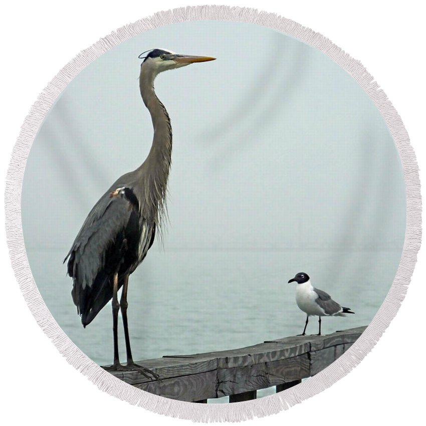 Blue Heron Round Beach Towel featuring the photograph Youve Got A Friend by Lizi Beard-Ward