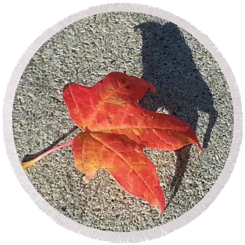 Red Leaf Round Beach Towel featuring the photograph Me And My Shadow by Caryl J Bohn
