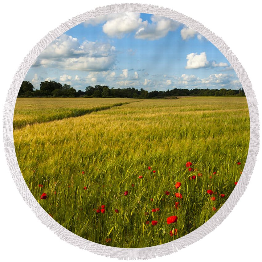 Botanic Round Beach Towel featuring the photograph Meadow Of Poppies by Svetlana Sewell