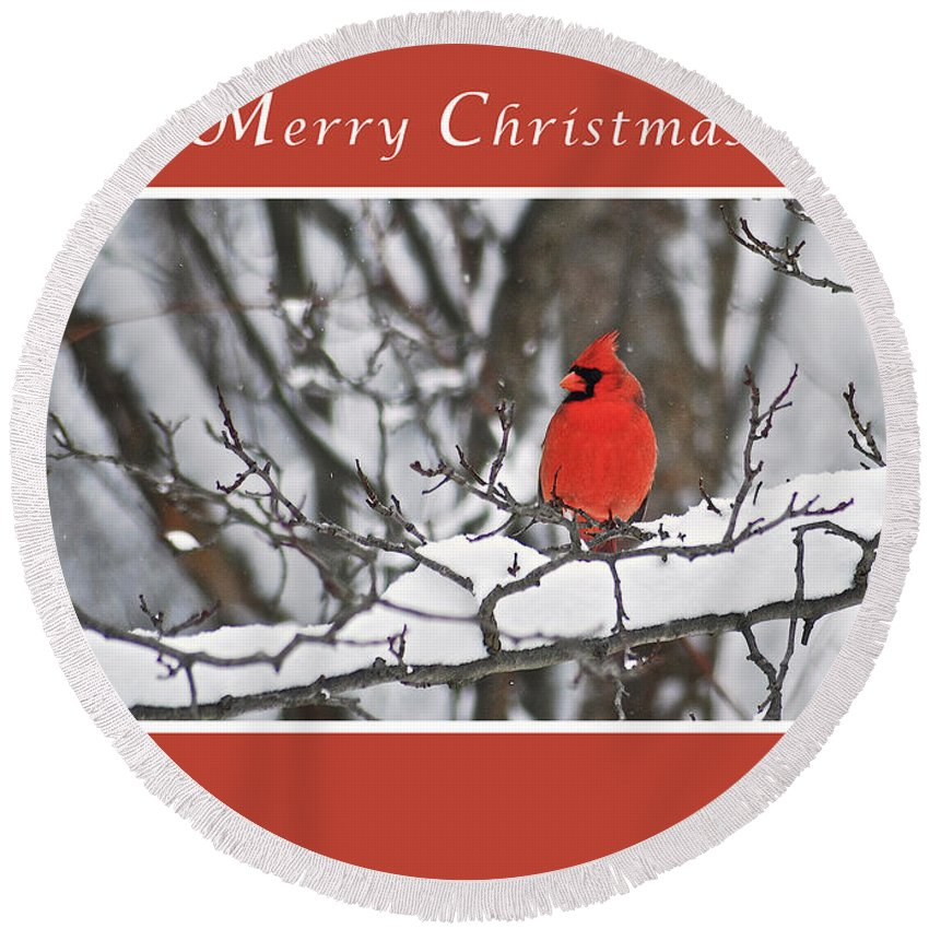 Merry Christmas Round Beach Towel featuring the photograph Merry Christmas Male Cardinal by Michael Peychich