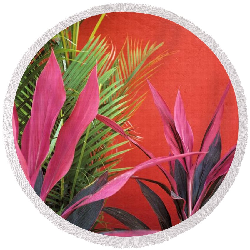 Red Wall Round Beach Towel featuring the photograph Mexican Garden Stil Life by John Harmon