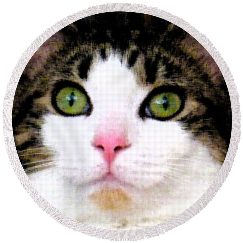 Cat Round Beach Towel featuring the photograph Mina's Green Eyes by Nina Silver