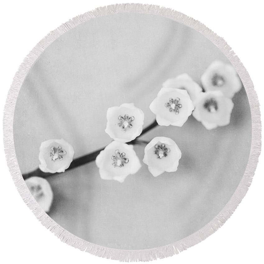 Still Life Round Beach Towel featuring the photograph Minimalist Lily In Black And White by Lisa Russo