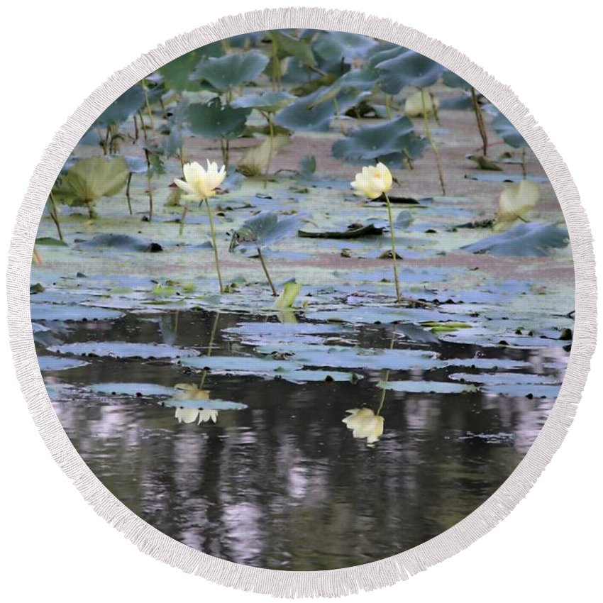 Lotus Round Beach Towel featuring the photograph Mississippi Lotus by Bonfire Photography