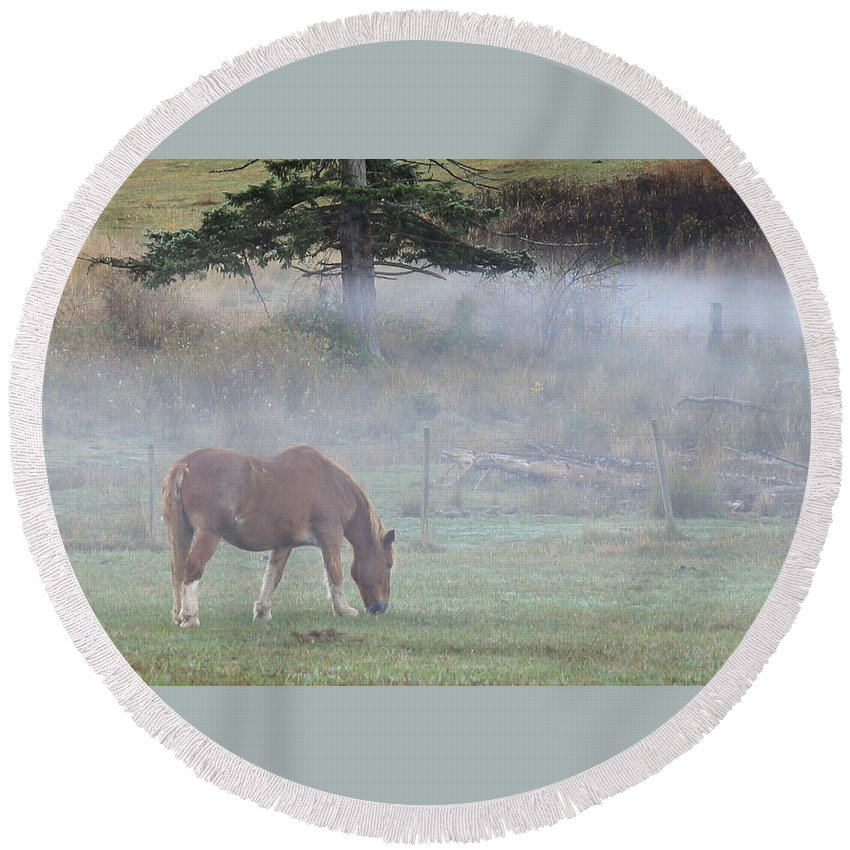 Horse Round Beach Towel featuring the photograph Misty Meadow by Randy Hall