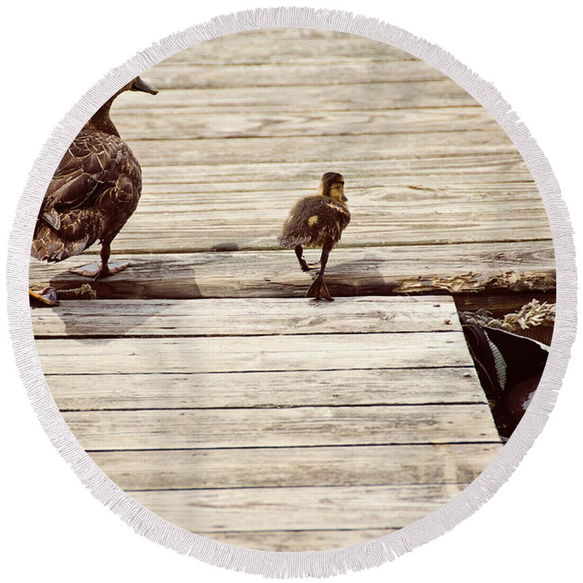 Duck Round Beach Towel featuring the photograph Mom And Me by Donna Doherty