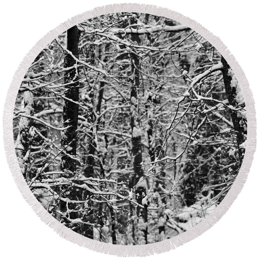 Winter Forest Round Beach Towel featuring the photograph Monochrome Winter Wilderness by Dan Sproul