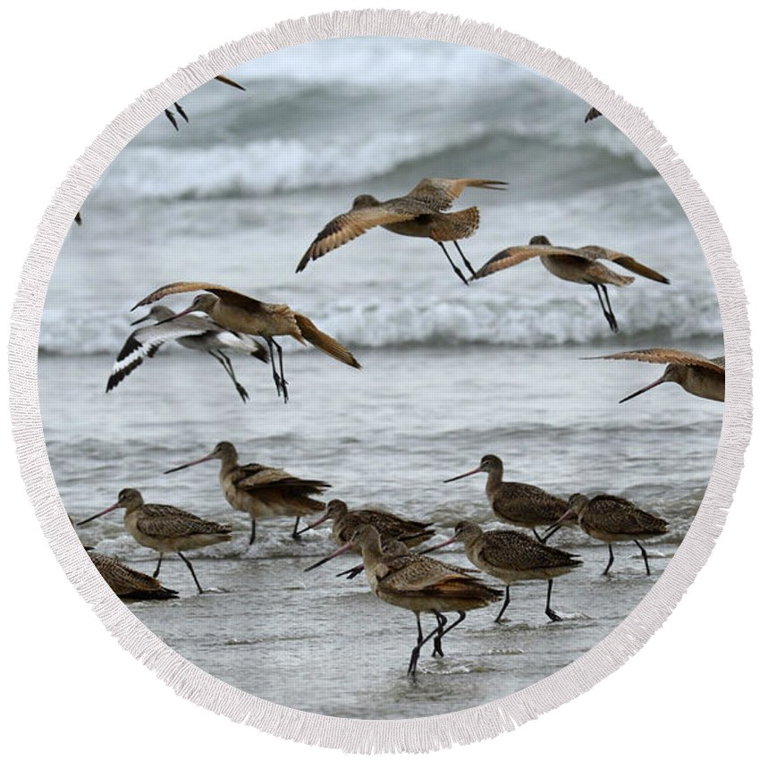 Bird Round Beach Towel featuring the photograph Morning Commute by Bob Christopher