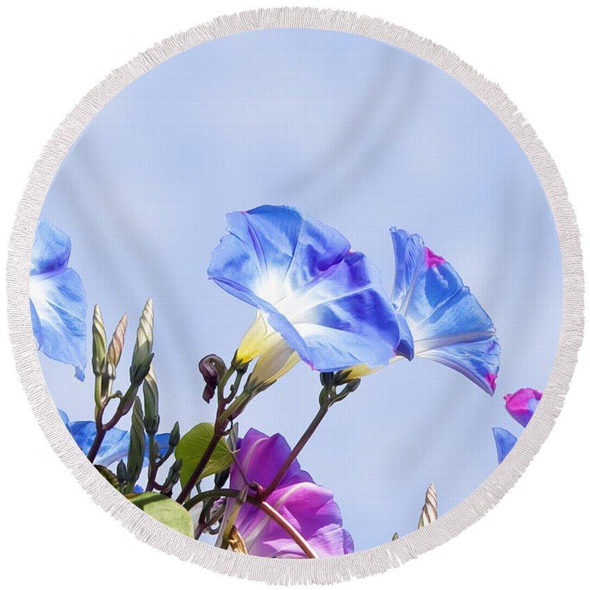Gabriele Pomykaj Round Beach Towel featuring the photograph Morning Glory Flowers by Gabriele Pomykaj