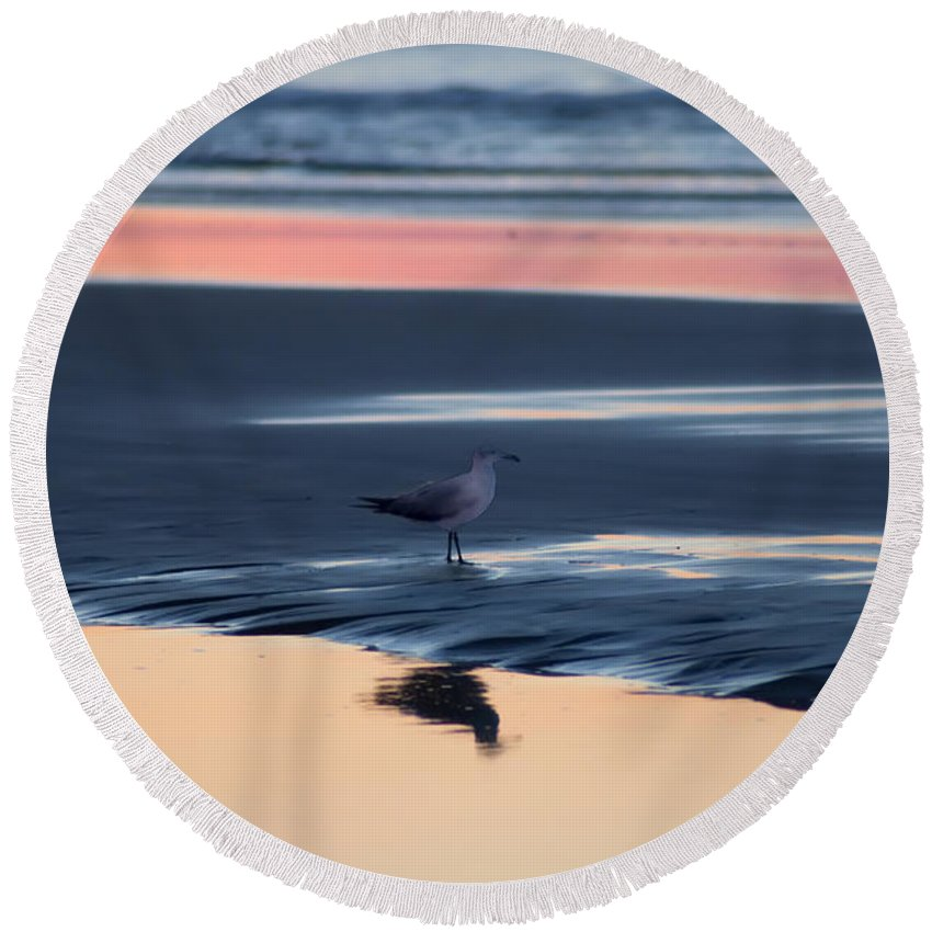 Morning Gull Round Beach Towel featuring the photograph Morning Gull by Bill Cannon