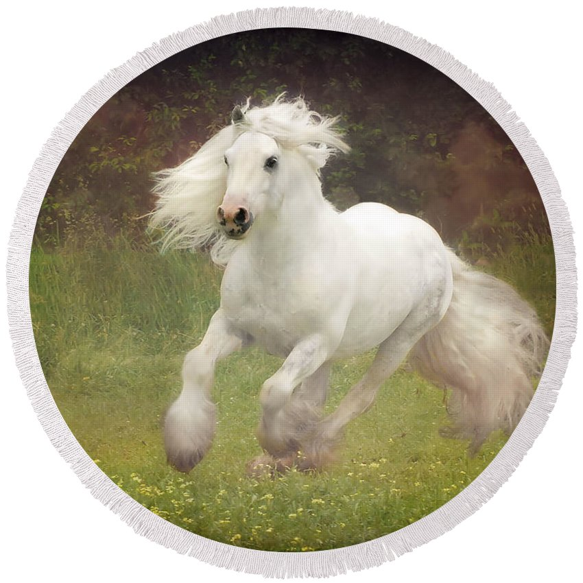 Horses Round Beach Towel featuring the photograph Morning Mist C by Fran J Scott