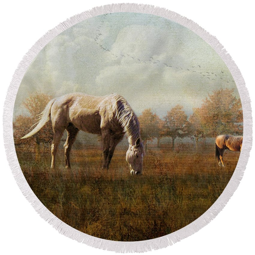 Horses Round Beach Towel featuring the photograph Morning Montage by Shannon Story