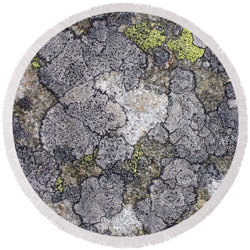Abstract Round Beach Towel featuring the photograph Mossy Mouldy Rock Texture by Antony McAulay