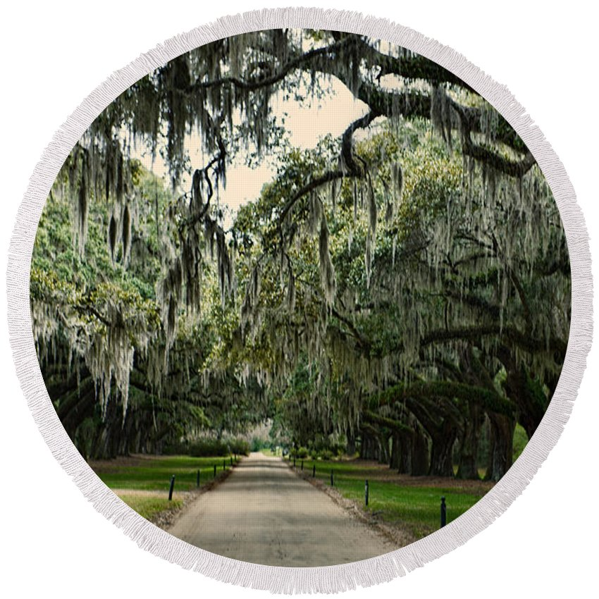 Trees Round Beach Towel featuring the photograph Mossy Oaks by David Arment