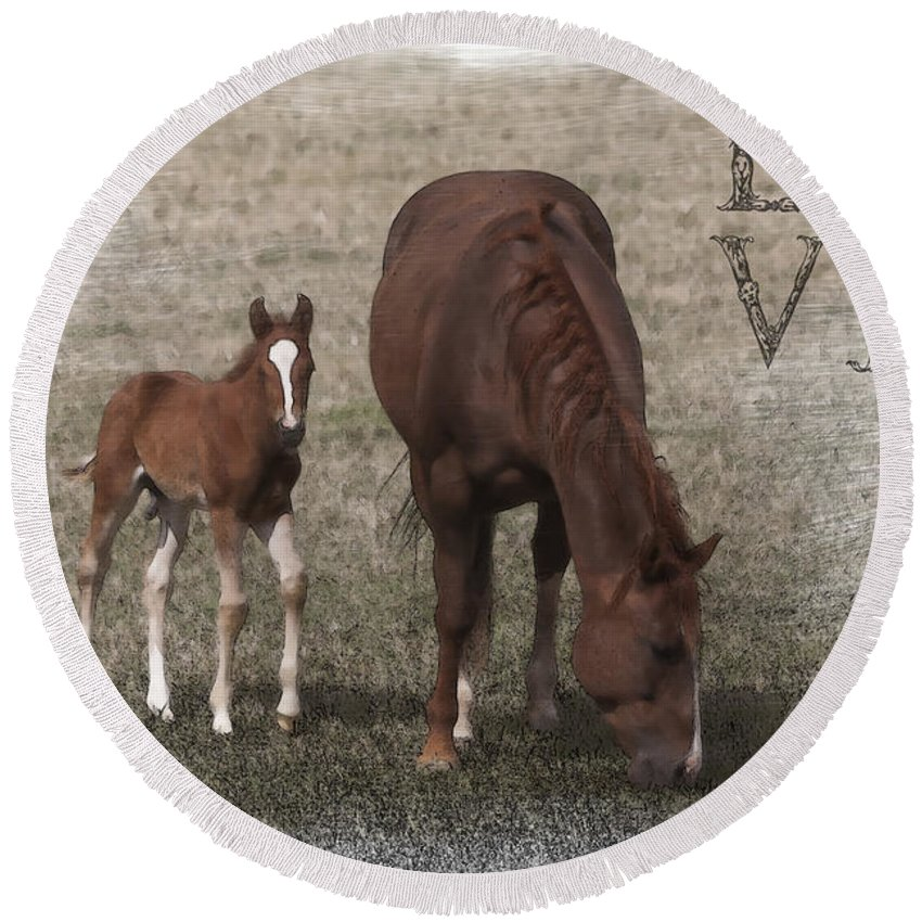 Horse Round Beach Towel featuring the photograph Mother And Son Love by Janice Pariza
