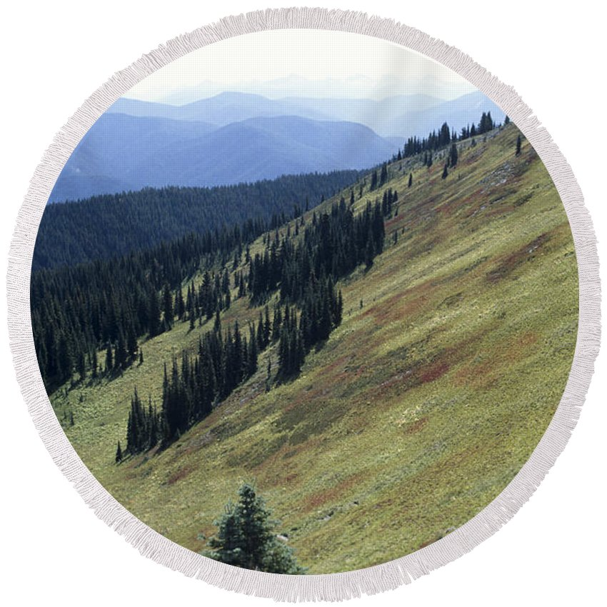 Ecology Round Beach Towel featuring the photograph Mountain Slope by Roderick Bley