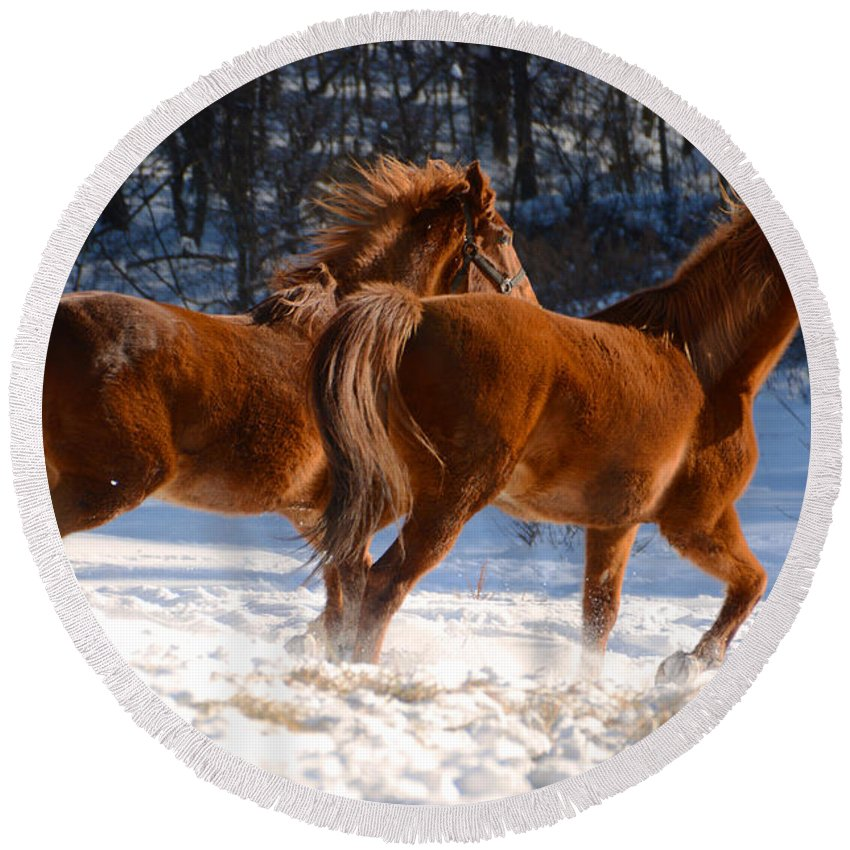 Horse Round Beach Towel featuring the photograph Moving In Motion 2 by Tracy Winter