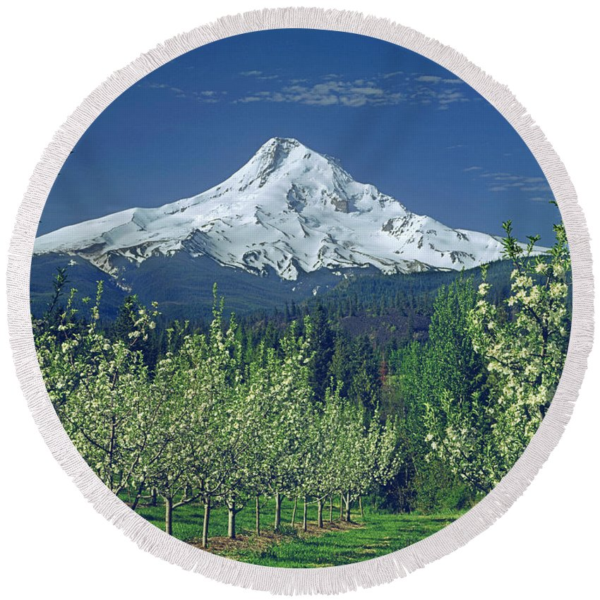 Mt. Hood Round Beach Towel featuring the photograph 1m5125-mt. Hood In Spring by Ed Cooper Photography