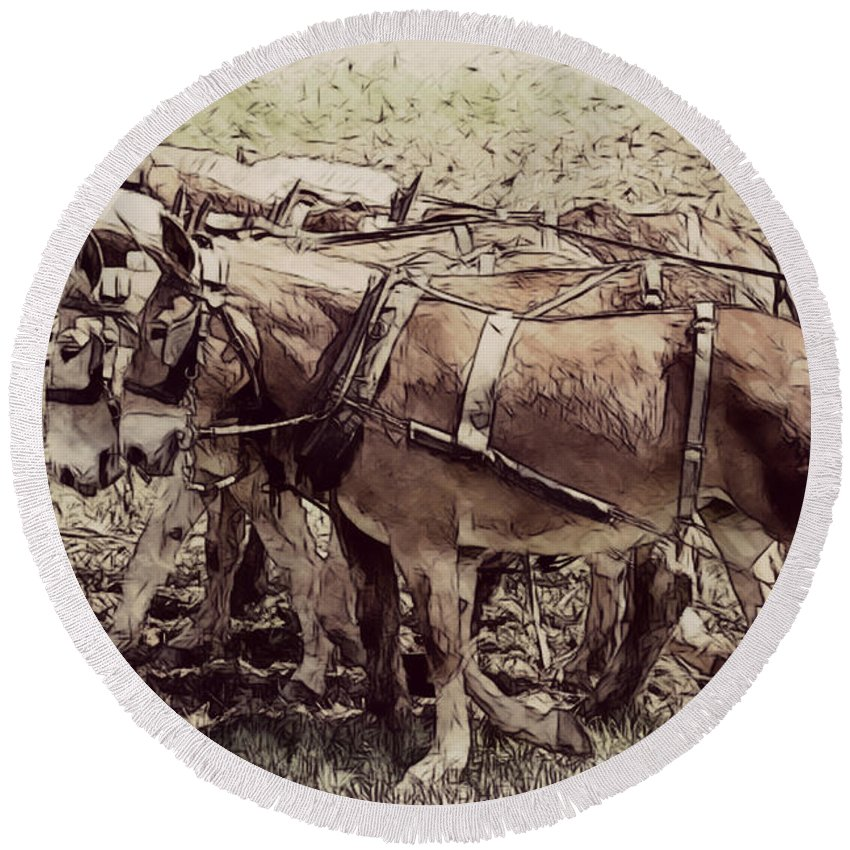 Mules Round Beach Towel featuring the photograph Mule Team by Alice Gipson