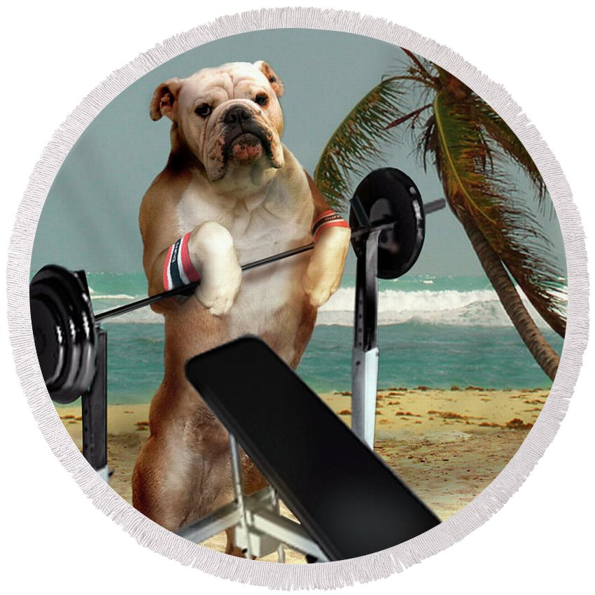 Pet Picture Dog Lifting Weights Print Round Beach Towel featuring the painting Muscle boy Boxer lifting weights by Regina Femrite