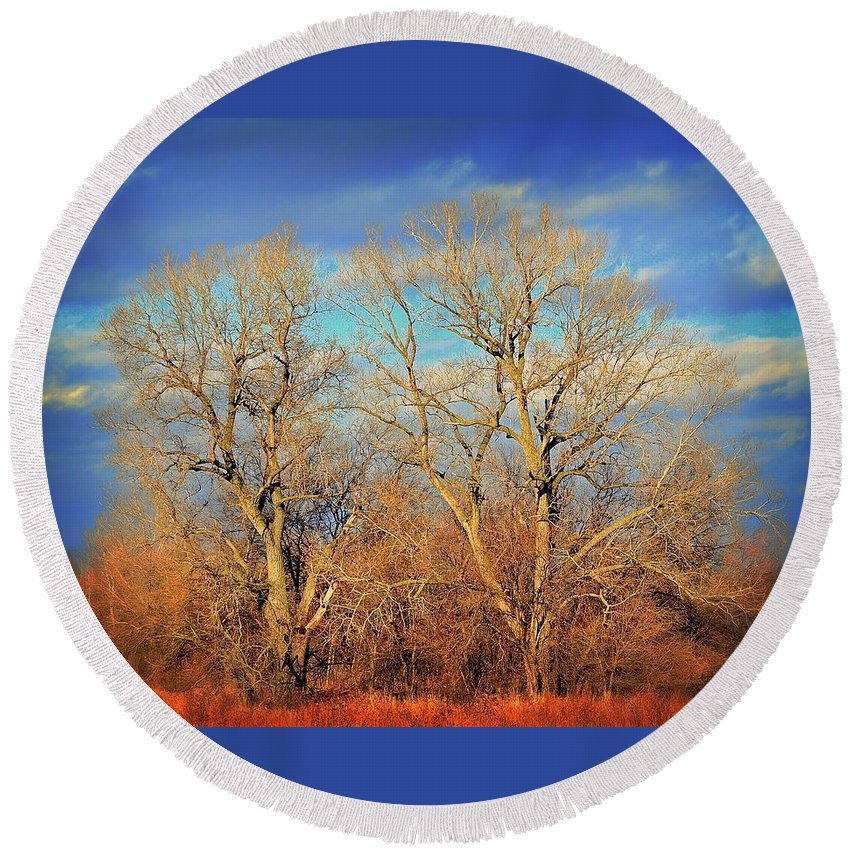 Wall Art Round Beach Towel featuring the photograph Naked Branches by Marty Koch