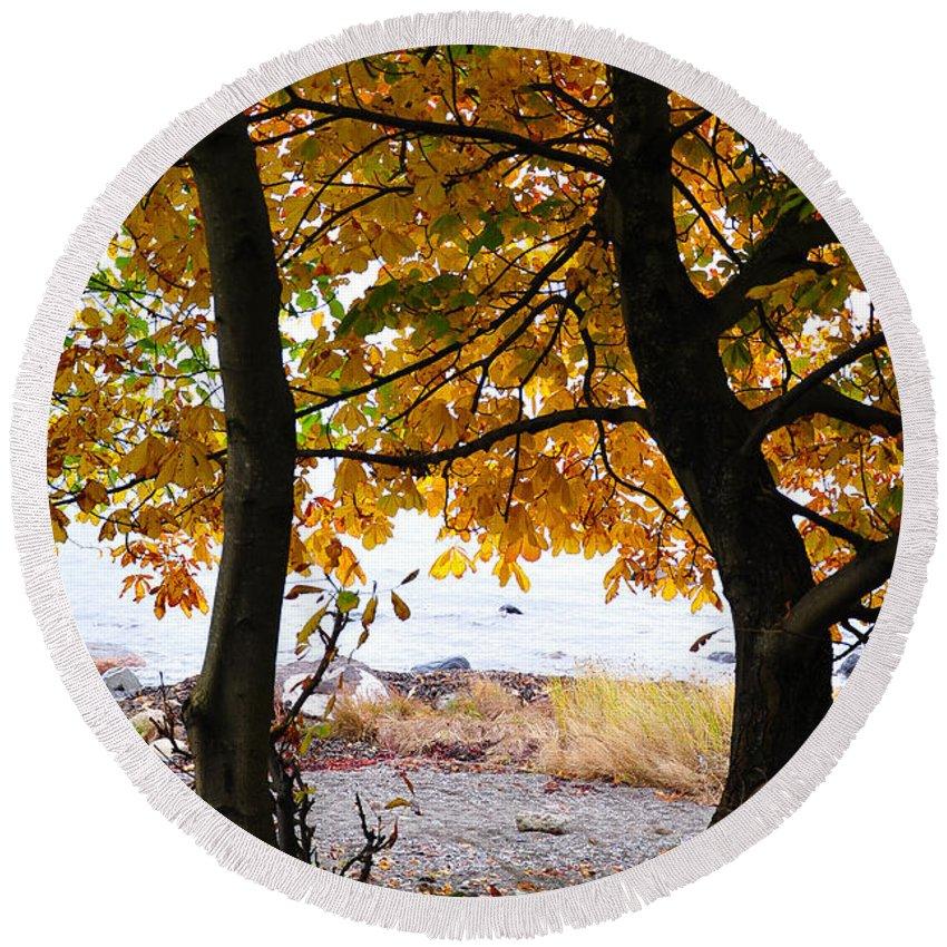 Fall Round Beach Towel featuring the photograph Natural Framing by Randi Grace Nilsberg