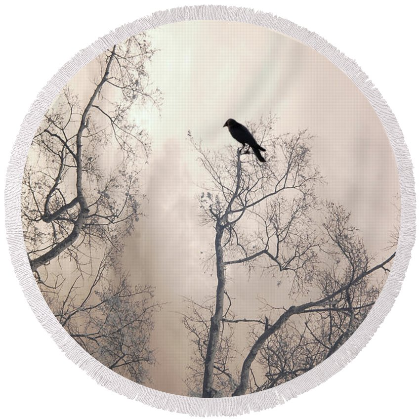 Gothic Nature Photo Round Beach Towel featuring the photograph Nature Raven Crow Trees - Surreal Fantasy Gothic Nature Raven Crow In Trees Sepia Print Decor by Kathy Fornal