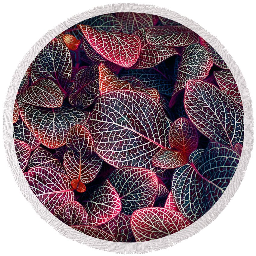 Garden Round Beach Towel featuring the photograph Nature's Rich Tapestry by Wayne Sherriff